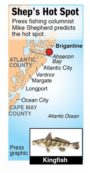 Shep Hot Spot kingfish Brigantine and/or Absecon Bay