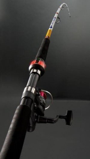 Computer-powered fishing pole