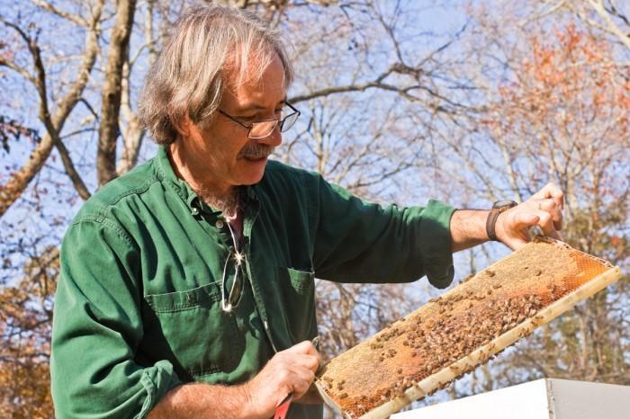 beekeeping112924802.jpg