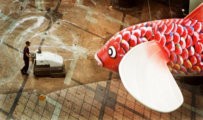 FISH.50180.JPG