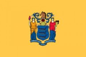 nj flag