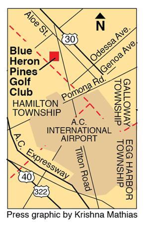 Blue Heron pines