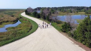 Forsythe NWR offering walk for beginning birders Sunday
