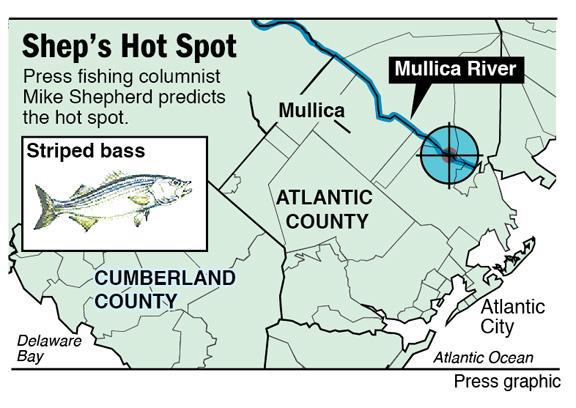 hot spot striper mullica river