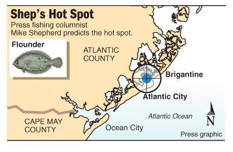 Shep Hot Spot flounder Absecon Inlet