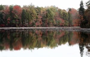 Lake Nummy