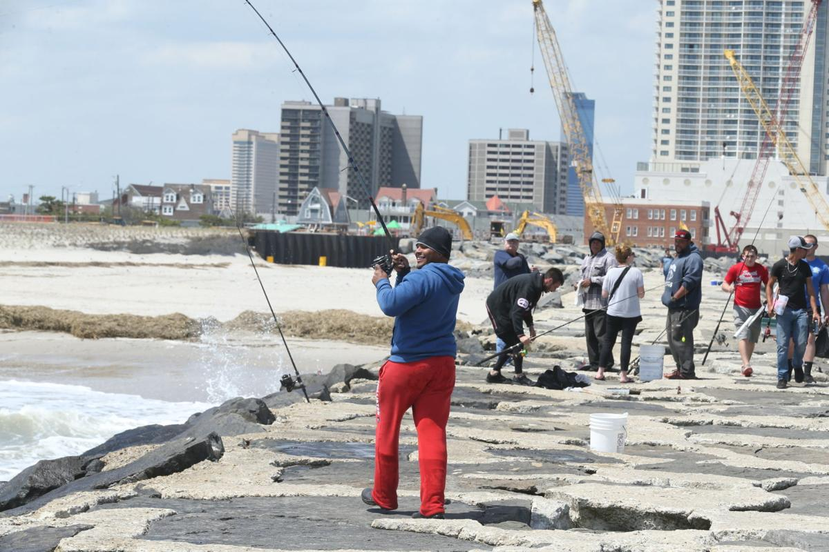 Bluefish surge in south jersey 39 epic right now for Atlantic city fishing