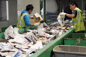 Cape officials hope simplified process will increase visitors' recycling