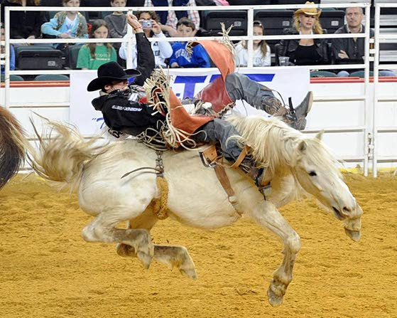 Rodeo, cowboys return to Atlantic City Boardwalk
