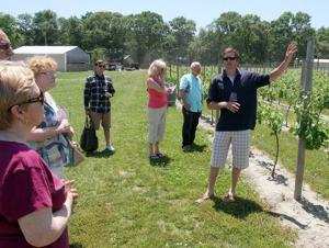 A time for wineThe popularity of wine is growing, so are the local opportunities to learn more about your favorite fruit of the vine