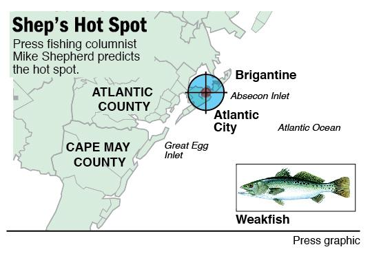 shep on fishing weakfish off a.c.