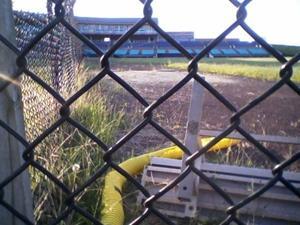 Bernie Robbins Stadium