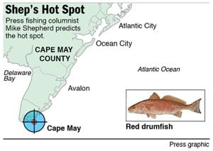Hot Spot red drum off Cape May