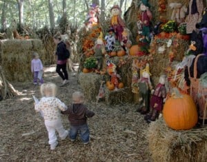 Fall Guide Storybook land
