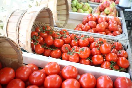West Cape May paints town red each year with Tomato Festival