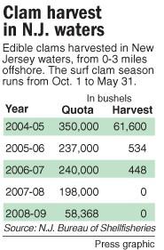 clam harvest