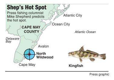 Hot spot Kingfish North Wildwood