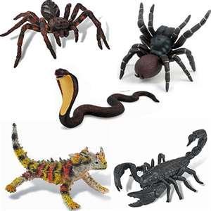 crawlers.jpg
