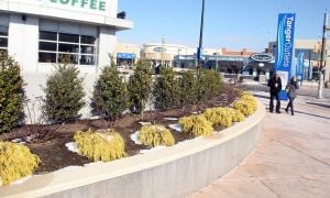 Tanger Outlets: Tanger Outlets has 'Tangerized' The Walk.  - Photo by Ed Lea