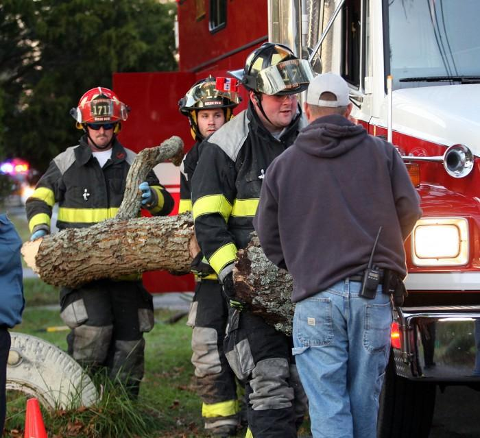 Tree Accident81008312.jpg