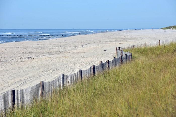 BEACH FILLS