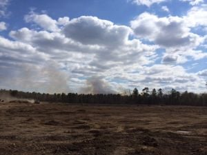 Downe Township forest fire 55 percent contained
