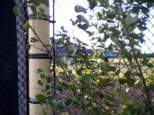 Bernie Robbins Stadium 2