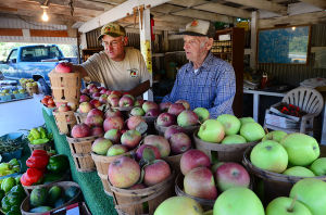 Fall Begins: William Boerner Jr. (left) re-stocks apples with his father, William Boerner Sr. at the Pleasant Valley Farm in Mays Landing. Friday September 20 2013 (The Press of Atlantic City / Ben Fogletto) - Ben Fogletto
