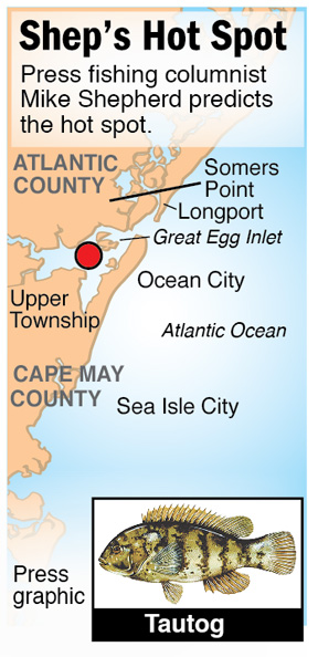 Shep Hot Spot tautog Ocean City