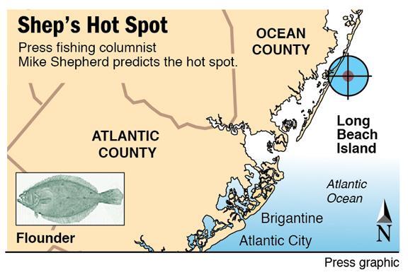 Shep Hot Spot LBI flounder