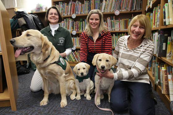 Puppies with a purposeGroup seeks people to raise dogs for Seeing Eye