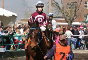 Day At The Races: Jockey Jacqueline Davis atop 'Caillech's Quest' parades in the circle. Sunday April 27 2014 Live turf racing at the Atlantic City Racecourse in Mays Landing. (The Press of Atlantic City / Ben Fogletto) - Ben Fogletto