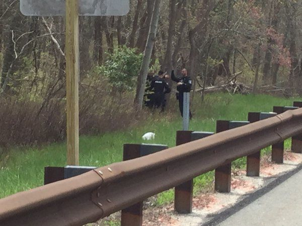 Escaped Inmate Captured In Woods By Garden State Parkway News