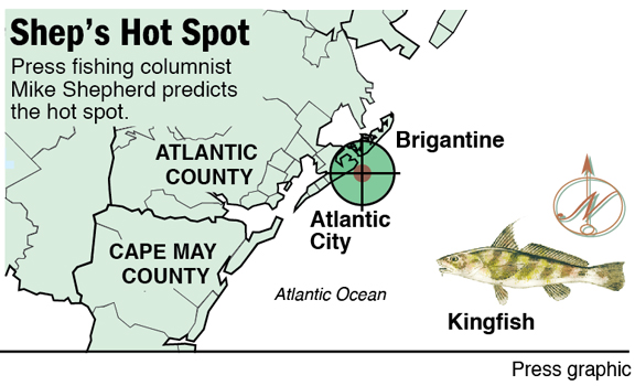 hot spot kingfish AC