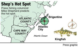 hot spot kingfish AC