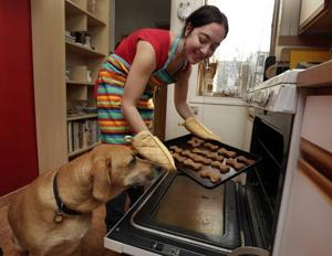 Feeding the most appreciative guest: the dog