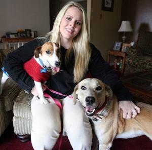 High-tech pet adoptions