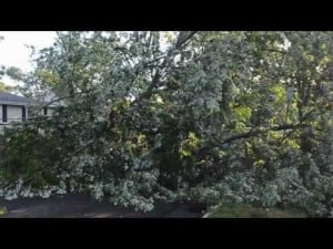 Storm Damage 3.mov