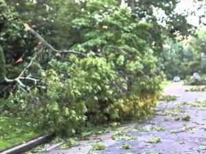 Linwood Storm Damage