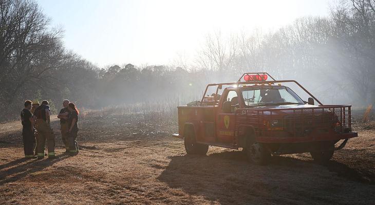 EHT Forest Fire