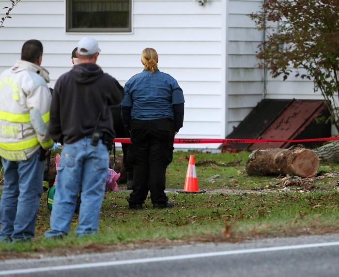 Tree Accident81008313.jpg