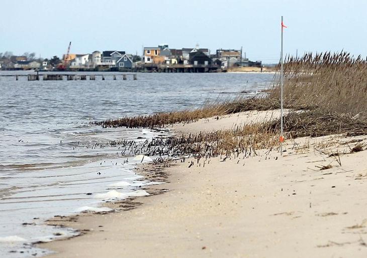 Beach Bay Restore