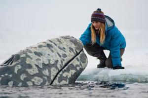 'Big Miracle' lives up to its real-life story