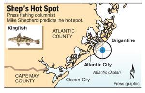 Hot Spot kingfish at T-Jetty