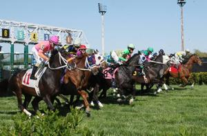 Thousands enjoy a rare day with the horses at Atlantic City Race Course