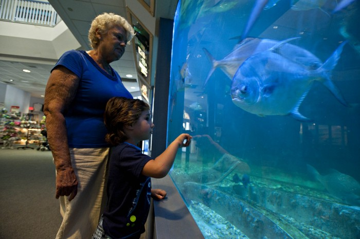 Atlantic City Aquarium Remains Busy With Variety Of