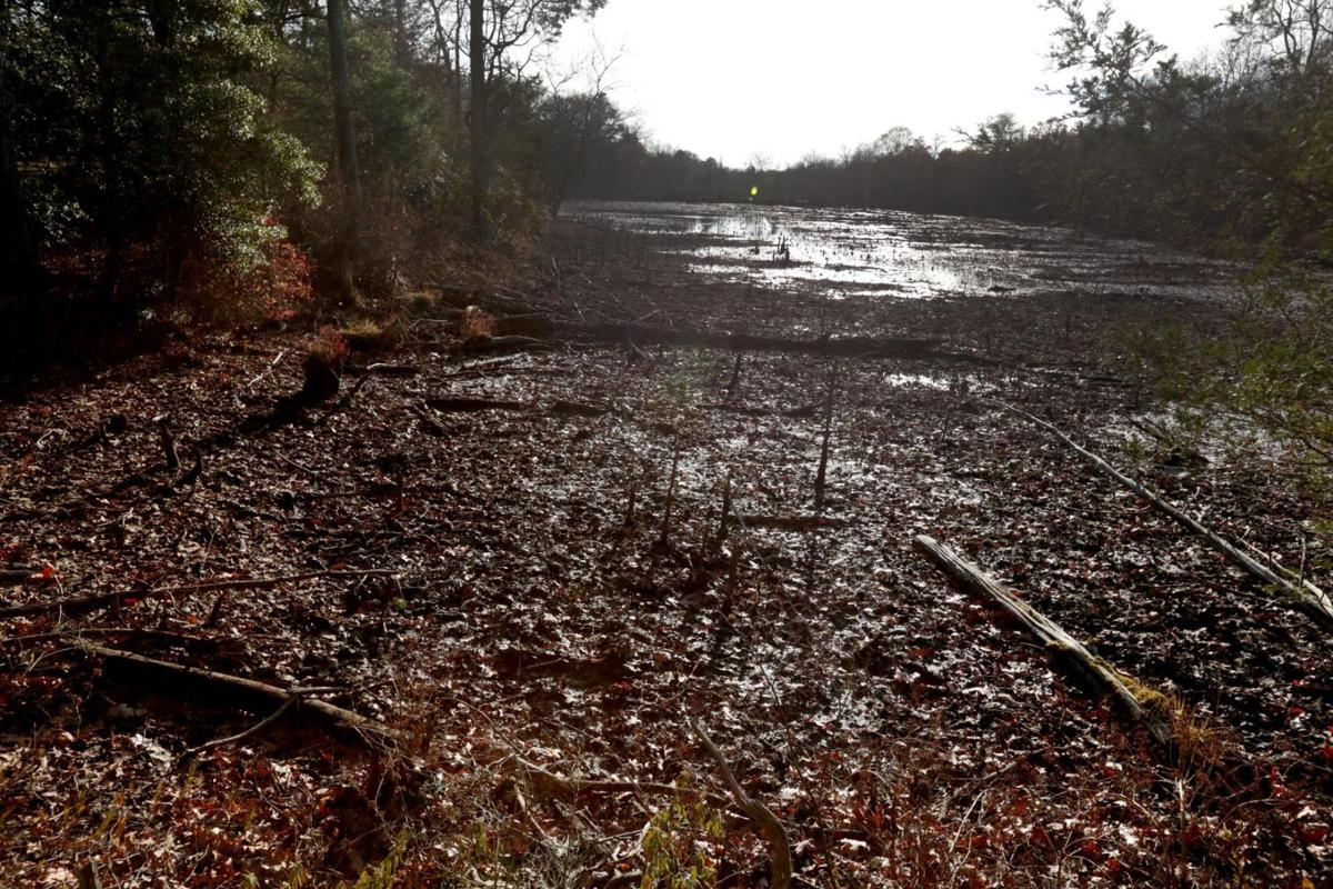 Dam destroyed Ballinger's Creek