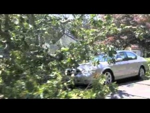 Northfield/Linwood Storm Damage
