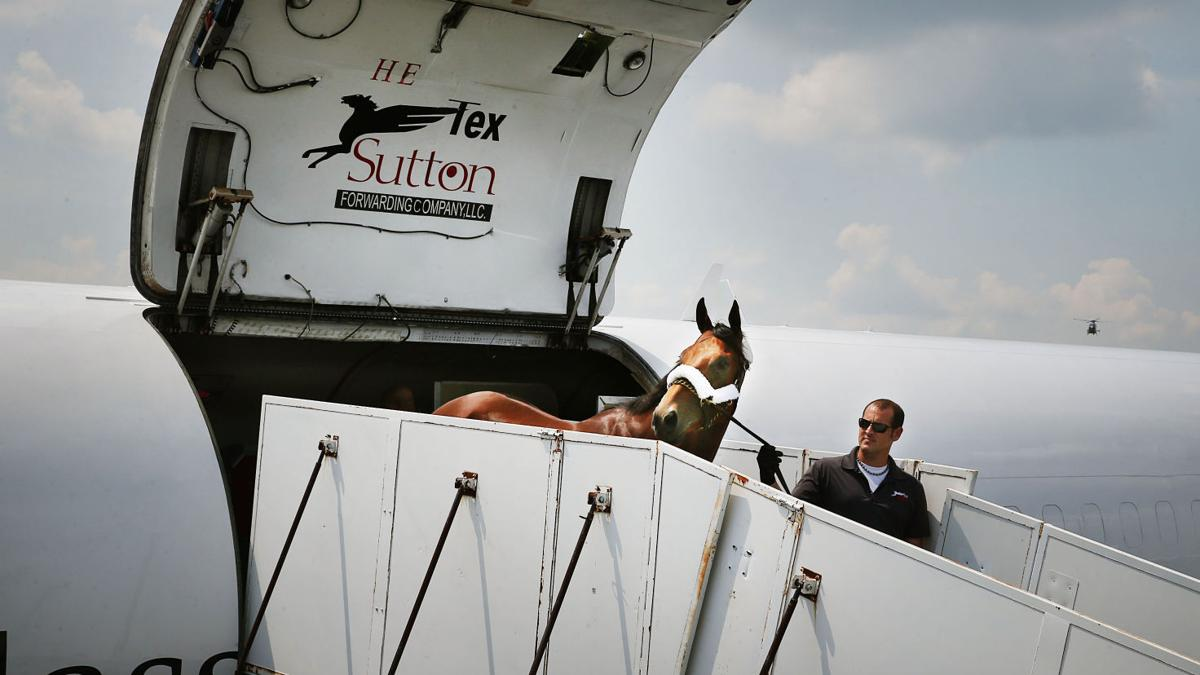American Pharoah arrives in N.J.