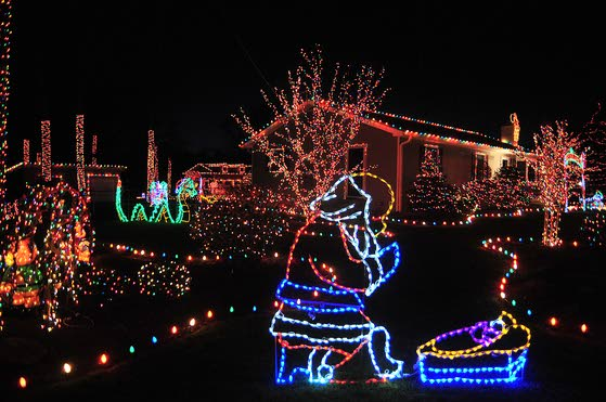 Hurricane Sandy didn't stop EHT man from putting up Christmas light display